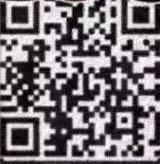 31483982830_-pic_hd
