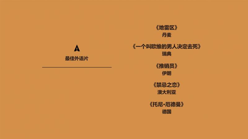 第89届奥斯卡最佳外语片提名影片