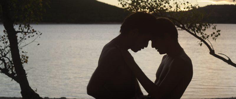 《湖畔的陌生人》剧照|来自网络